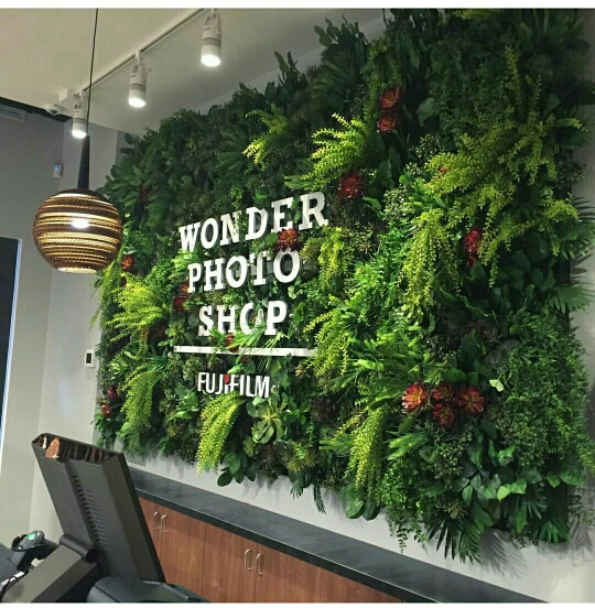 Jasa Pembuatan Vertical Garden Sintetis Bogor